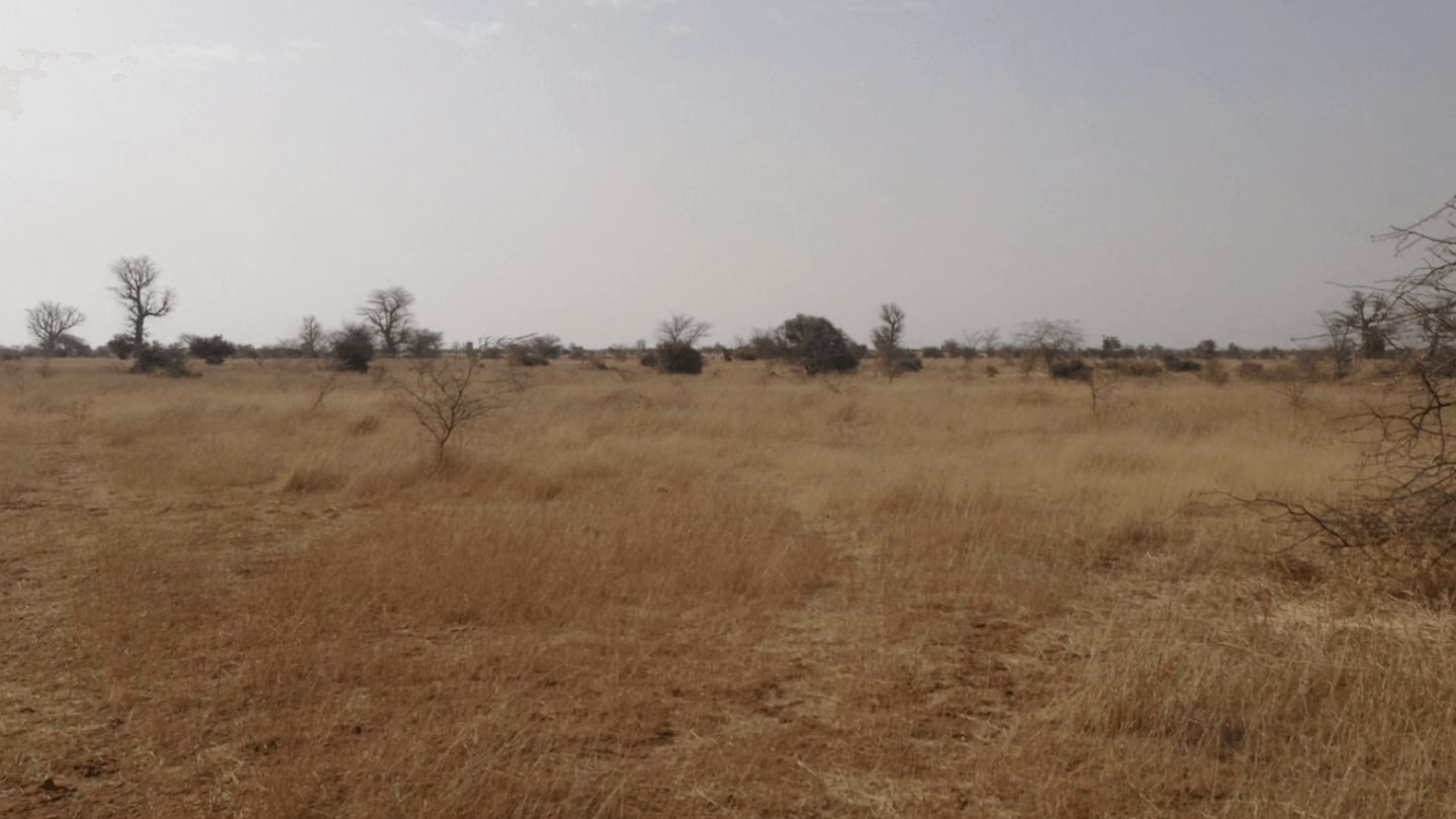 Senegal dry season BEFORE 2012